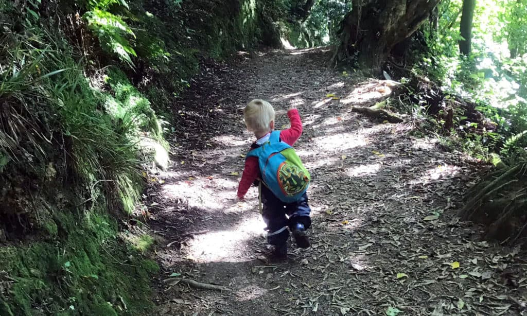 Toddlers in the wild thumbnail