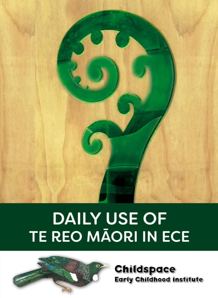 Te Ao Māori shop category for ECE & childcare in NZ