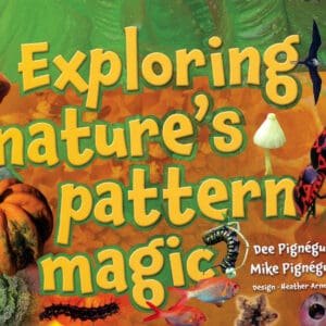 Exploring Natures Pattern Magic book for ECE